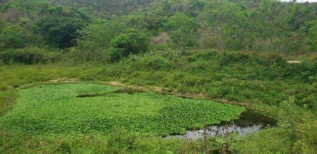 Fazenda 871 hectares no município de Divisa Alegre MG - Foto 16