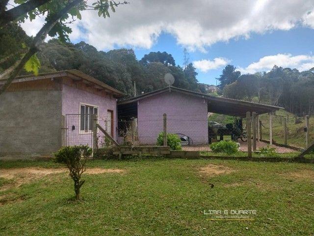 Chácara para Venda em Quitandinha Rio Negrinho-SC - Foto 13