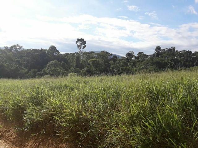 Fazenda ximarao em ALMENARA mg 125 hectares