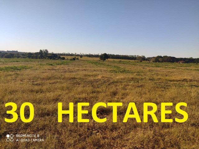 Área de 30 hectares saída São Paulo Próximo da BR 163 - Foto 2