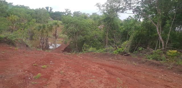 Fazenda 219 alqueires | região Caçu | boa pra lavoura plana - Foto 4