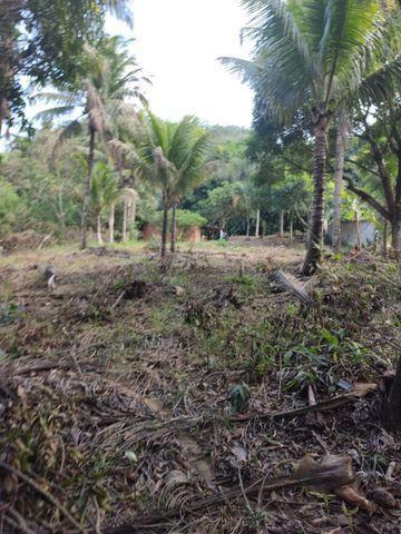 Terreno em São João do Jaboti - Espírito Santo - Foto 4