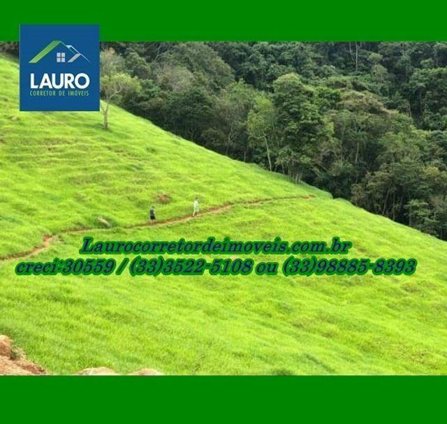Fazenda com 73 hectares em Capitólio - Foto 2