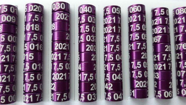 Anilhas de Marcação em Alumínio para Ring Neck 7,5mm Pack com 10 Unidades Ano 2021 Violeta - Foto 3