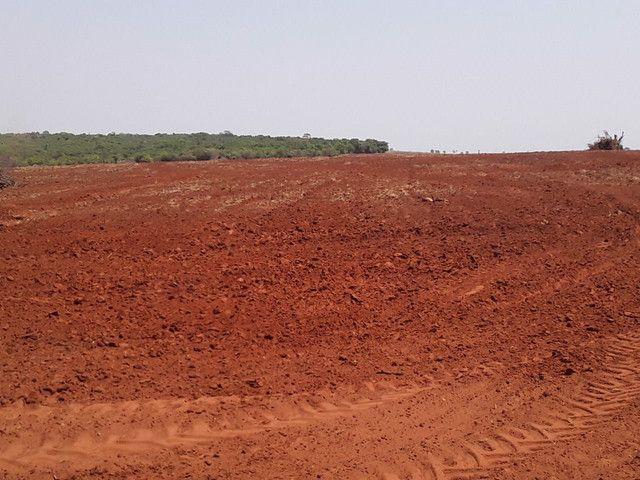 Arrendamento Fazendas PR Ms e Mt - Foto 16