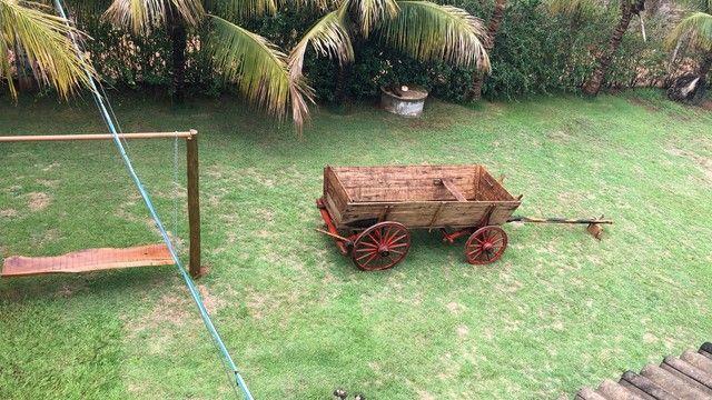 Carroça de boi antiga  - Foto 6