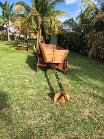 Carroça de boi antiga  - Foto 4