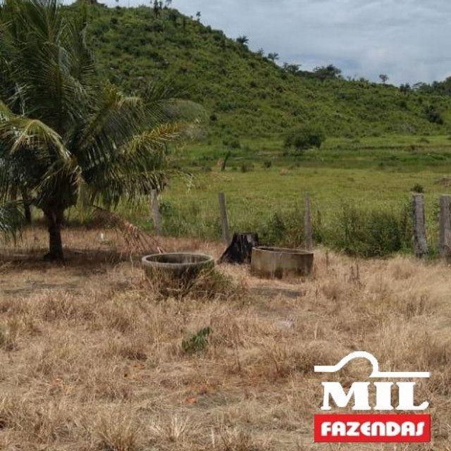 Fazenda de 320 alqueires (1550 hectares) em Vila Rica - MT - Foto 6