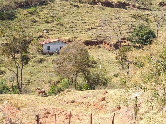 Fazenda 80 Alqueires Sendo 20 Alqueires Mata APP, Casa Sede(Em Reforma) e Caseiro Agua Nas - Foto 3