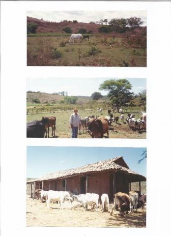 Fazenda Muquem 168,00 hectares Fagundes