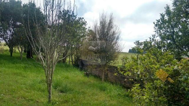 Chácara à venda em Zona rural, Contenda cod:219-16 - Foto 17