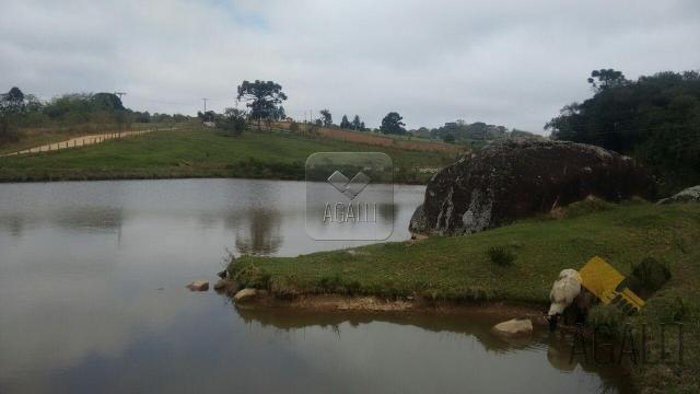 Chácara à venda em Zona rural, Contenda cod:219-16 - Foto 2