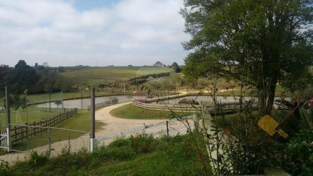 Chácara à venda em Zona rural, Contenda cod:219-16 - Foto 12