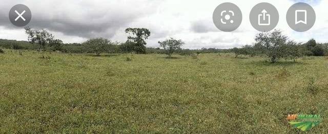 Fazenda em São Gonçalo dos Campos - Foto 2