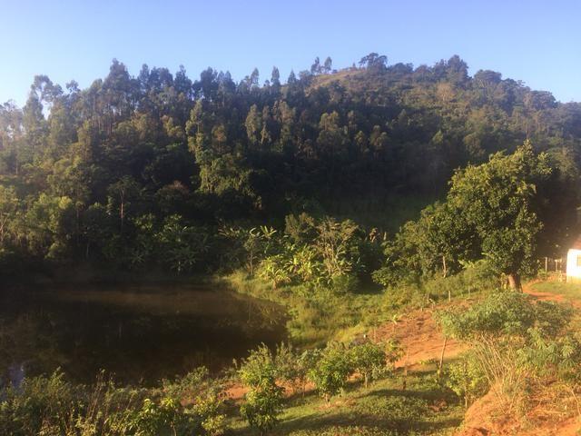 Fazenda no Vale do Jequiriçá - Foto 9