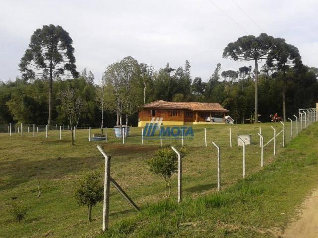 Chácara condomínio fechado são josé dos pinhais - Foto 3