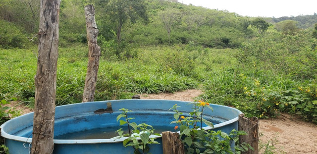 Fazenda 871 hectares no município de Divisa Alegre MG - Foto 19