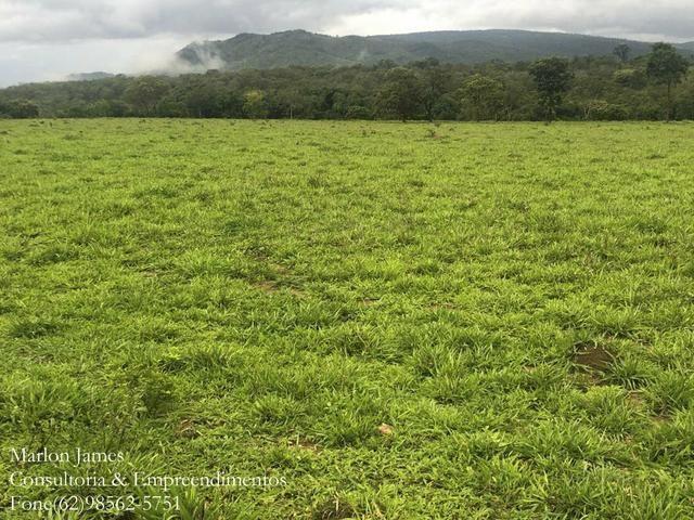 Fazenda em Vila Propício-Go! - Foto 11