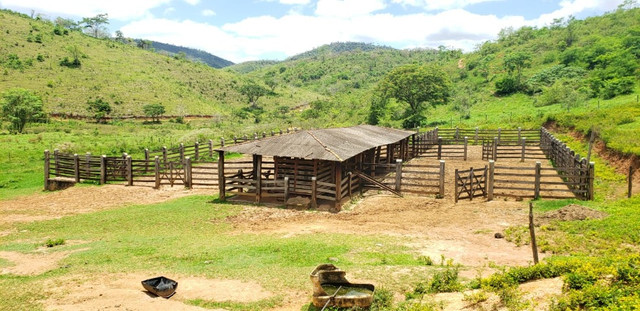 Fazenda 871 hectares no município de Divisa Alegre MG - Foto 6