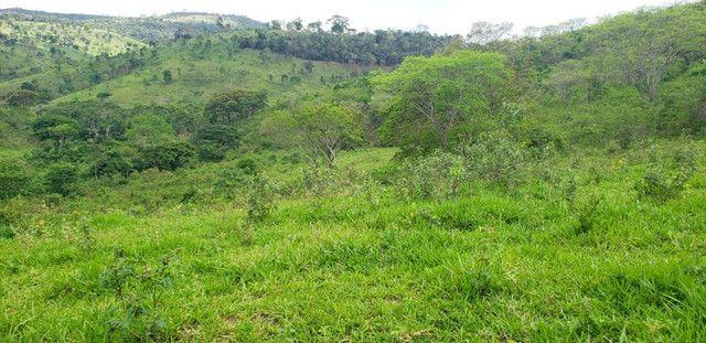 Fazenda 871 hectares no município de Divisa Alegre MG - Foto 4