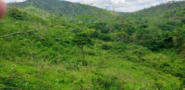 Fazenda 871 hectares no município de Divisa Alegre MG - Foto 7