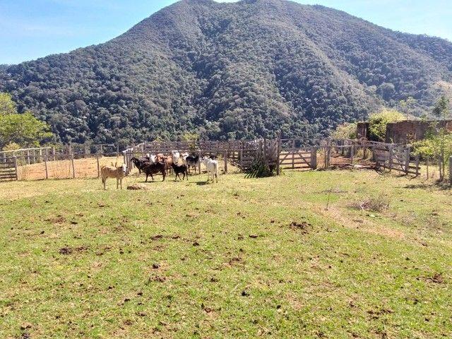 Fazenda 80 Alqueires Sendo 20 Alqueires Mata APP, Casa Sede(Em Reforma) e Caseiro Agua Nas - Foto 7