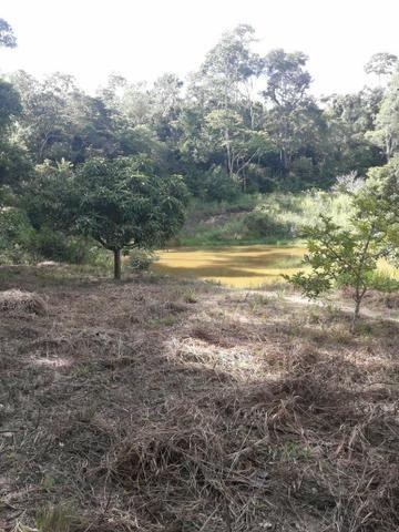 Fazenda ximarao em ALMENARA mg 125 hectares - Foto 11