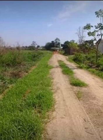 Vendo terreno na vila acre aceito prospostas - Foto 3