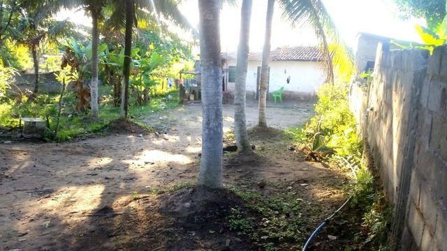 Vendo sítio 630m² com 2 casas 21m x 30m - Foto 11