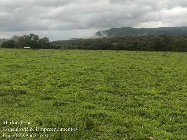 Fazenda em Vila Propício-Go! - Foto 8