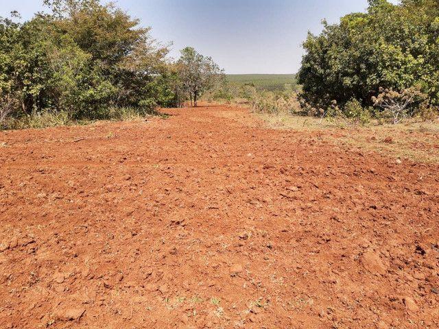 Arrendamento Fazendas PR Ms e Mt - Foto 19