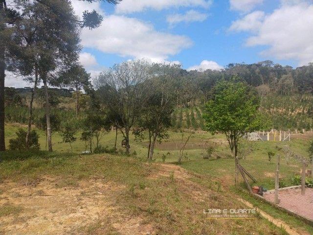 Chácara para Venda em Quitandinha Rio Negrinho-SC - Foto 14