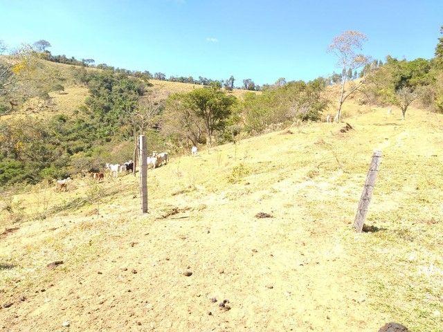 Fazenda 80 Alqueires Sendo 20 Alqueires Mata APP, Casa Sede(Em Reforma) e Caseiro Agua Nas - Foto 2