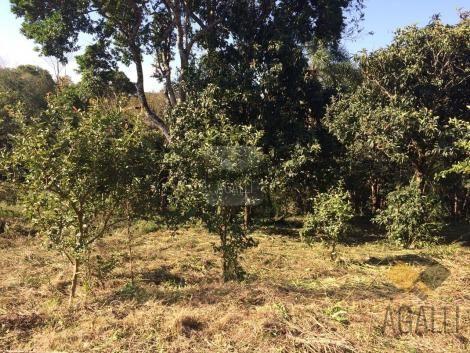 Terreno à venda em Centro, Colombo cod:300-17 - Foto 8