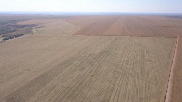 Fazenda 1.150 Hectares Plantando Lavoura - Nova Mutum - MT