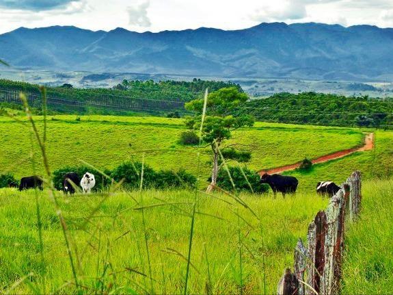 Fazenda interior de Canarana-MT 75Hectares