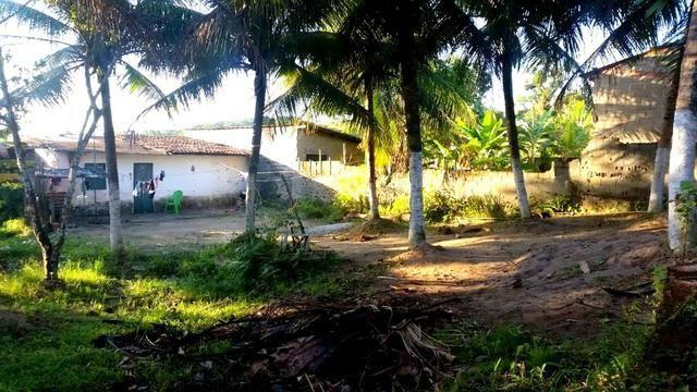 Vendo sítio 630m² com 2 casas 21m x 30m - Foto 12