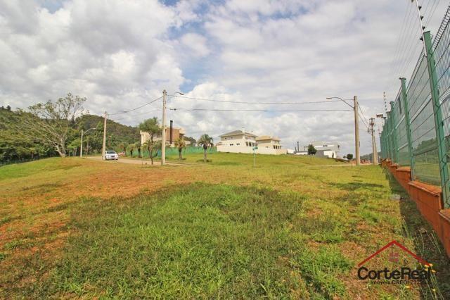 Terreno à venda em Vila nova, Porto alegre cod:6013 - Foto 5
