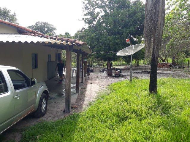 Fazenda Paraiso - Foto 3
