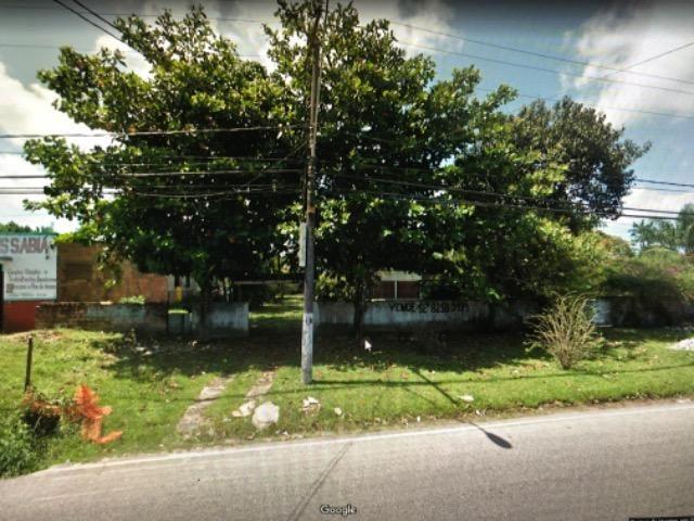 Dois terrenos na beira do asfalto em mosqueiro - Foto 6