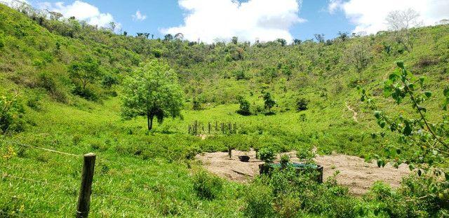 Fazenda 871 hectares no município de Divisa Alegre MG - Foto 5