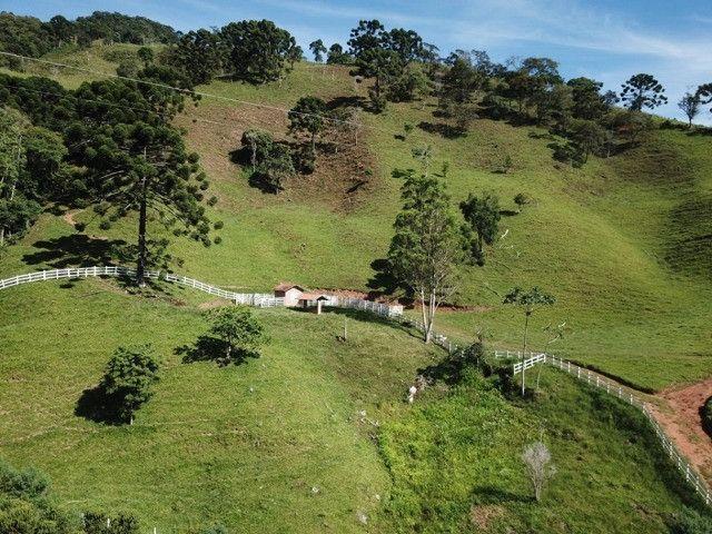 Maravilhoso Sítio de 9.9 Alqueires na Serra Mantiqueira Município Piranguçu-Mg - Foto 9