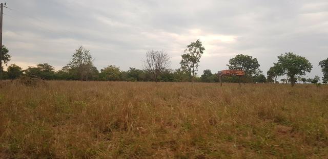 Fazenda 219 alqueires | região Caçu | boa pra lavoura plana - Foto 3