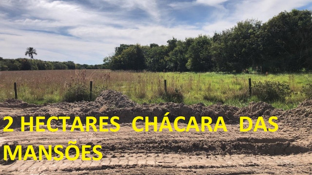 Oportunidade de Investimento Chácara das Mansões 2 Hectares - Foto 9
