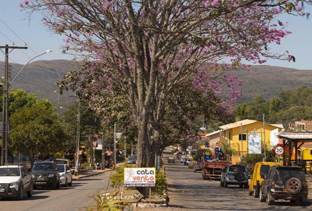 Oportunidade Única! Vendo terreno 1000mts Alto Paraíso Chapada dos Veadeiros - Foto 2
