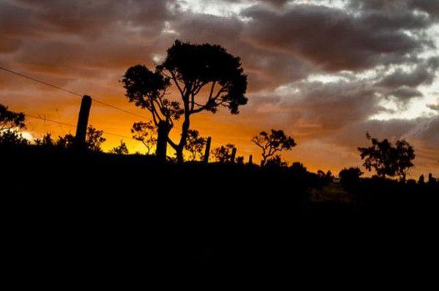 Oportunidade Única! Vendo terreno 1000mts Alto Paraíso Chapada dos Veadeiros - Foto 6