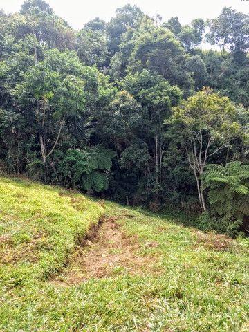 Maravilhoso Sítio de 9.9 Alqueires na Serra Mantiqueira Município Piranguçu-Mg - Foto 20
