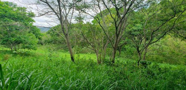 Fazenda 871 hectares no município de Divisa Alegre MG - Foto 15