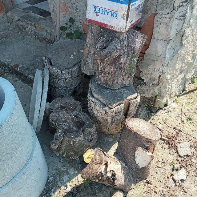 Vendo tronco de árvore para restaurante a lenha ou artesão  - Foto 3