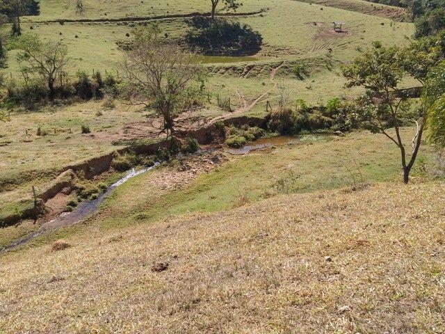 Fazenda 80 Alqueires Sendo 20 Alqueires Mata APP, Casa Sede(Em Reforma) e Caseiro Agua Nas - Foto 15